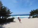 Up the California coast – Monterey to SanFrancisco
