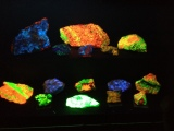 Fluorescent rocks, dinos and chipmunks